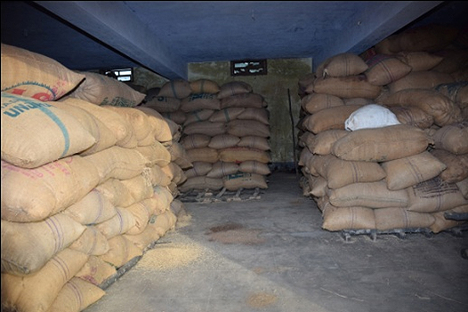 BAGS OF PADDY STORED IN DELAYED MARKETING CENTRE